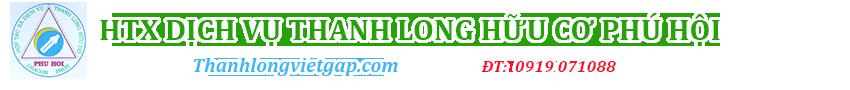 Thanh Long Việt Gap
